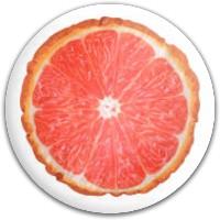Grapefruit Dynamic Discs Fuzion Warden Putter Disc