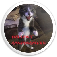 HellCat Dynamic Discs Fuzion Trespass Driver Disc