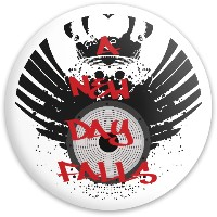 a new day falls Dynamic Discs Fuzion Enforcer Driver Disc