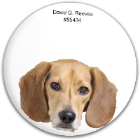 Henry head Dynamic Discs Fuzion Judge Putter Disc