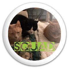 Cat Squad Discraft Buzzz