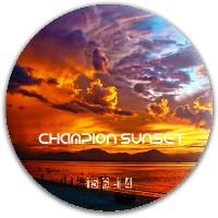 Champion Sunset Dynamic Discs Fuzion Criminal Driver Disc
