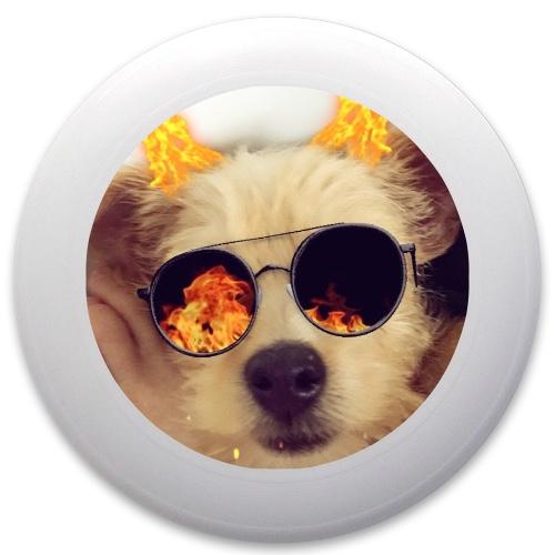 Doggo Bork Discraft Ultrastar Ultimate Frisbee