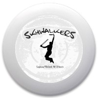Skywalkers Innova Pulsar Custom Ultimate Disc
