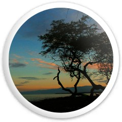 Kiholo Sunrise Dynamic Discs Fuzion Sheriff Driver Disc