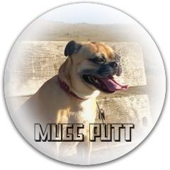 mugg putt Dynamic Discs Fuzion Judge Putter Disc