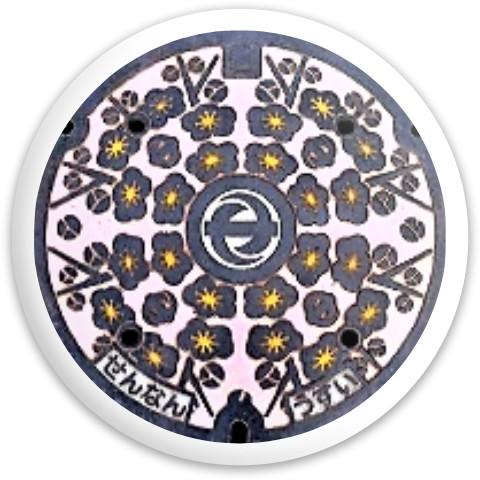 Latitude 64 Gold Line Compass Disc