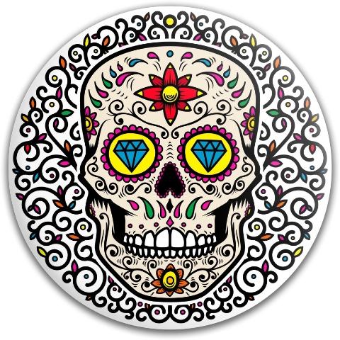 Sugar skull Dynamic Discs Fuzion Judge Putter Disc
