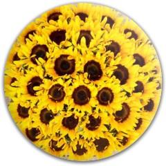 Sunflowers Dynamic Discs Fuzion Judge Putter Disc