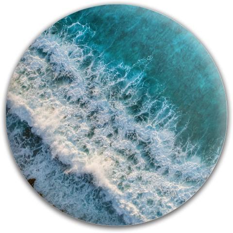Nature Disc Dynamic Discs Fuzion Felon Driver Disc