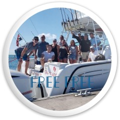 Free Free Dynamic Discs Fuzion Defender Driver Disc