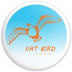 Fat Bird Opto Explorer Dynamic Discs Latitude 64 Opto Explorer