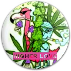 Higher Love Dynamic Discs Fuzion Justice Midrange Disc