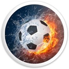 Soccer Ninja 4.0 Dynamic Discs Fuzion Defender Driver Disc
