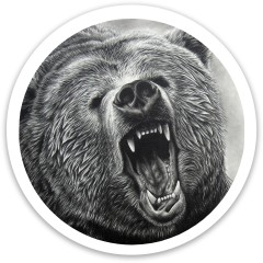 Bear Dynamic Discs Fuzion Trespass Driver Disc