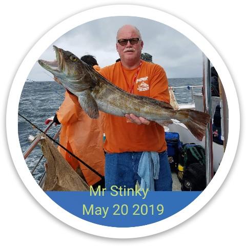 Mr Stinky Dynamic Discs Fuzion Sheriff Driver Disc