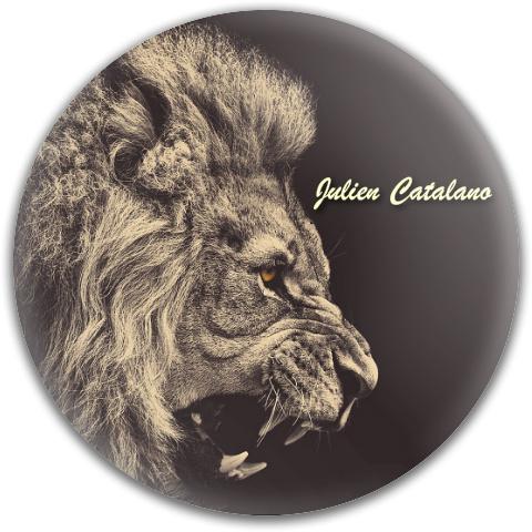 Julien's Disc Dynamic Discs Fuzion Verdict Midrange Disc