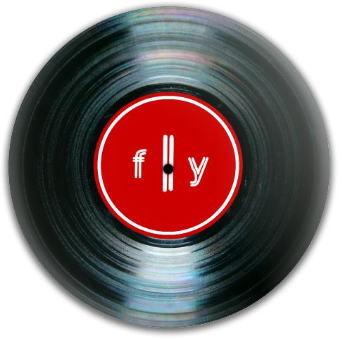 fly vinyl record Dynamic Discs Fuzion Verdict Midrange Disc