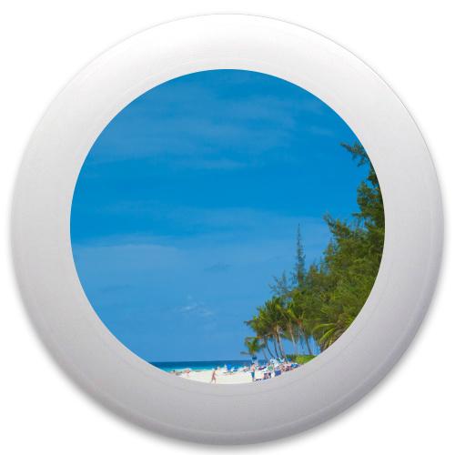 Beachfront Innova Pulsar Custom Ultimate Disc