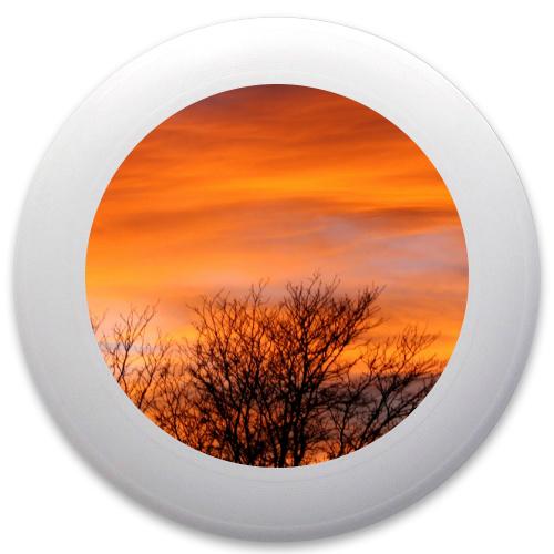 Fall Sunset Innova Pulsar Custom Ultimate Disc