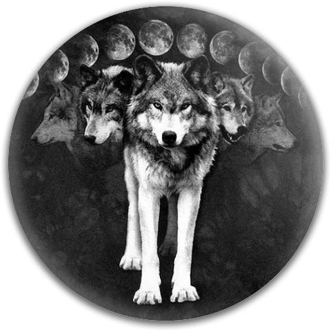 Wolfpack Dynamic Discs Fuzion Judge Putter Disc