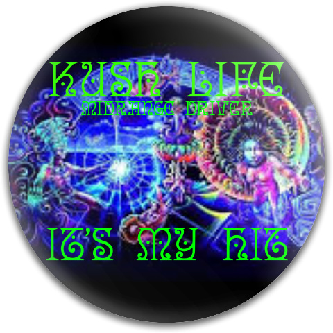 It's My Hit Dynamic Discs Fuzion Truth Midrange Disc