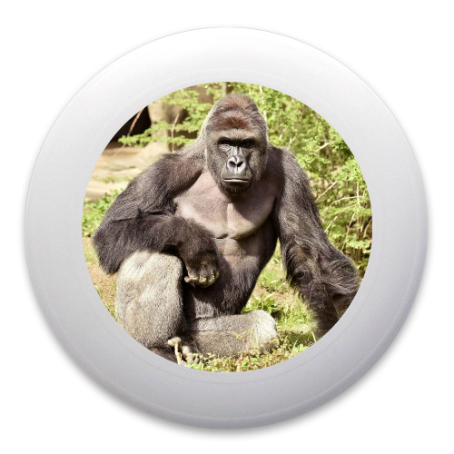 Harambe our lord and savior Ultimate Frisbee