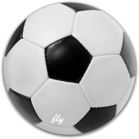 Fly Soccer Fly Discs Disc