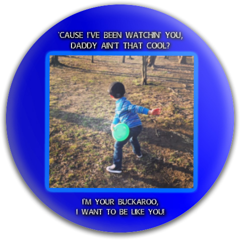 justins bday disc Discraft Buzzz Midrange Disc