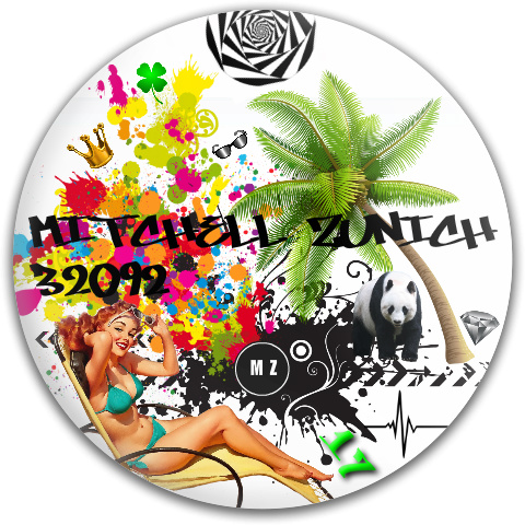 True Vision Dynamic Discs Fuzion Verdict Midrange Disc