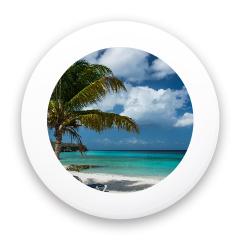 Tropical Paradise Mini Custom Mini Ultimate Disc