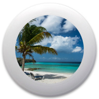 Tropical Paradice Innova Pulsar Custom Ultimate Disc