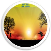 DGSL PUTT Dynamic Discs Fuzion Sheriff Driver Disc