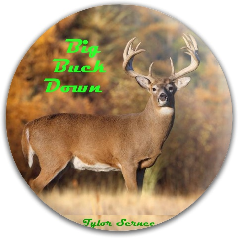 Big Buck Down Dynamic Discs Fuzion Judge Putter Disc