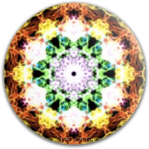 Time Warp Dynamic Discs Fuzion Verdict Midrange Disc