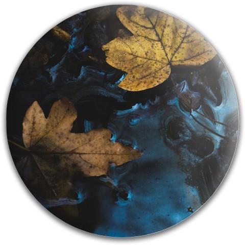 Design #64573 (Nature) Dynamic Discs Fuzion Felon Driver Disc
