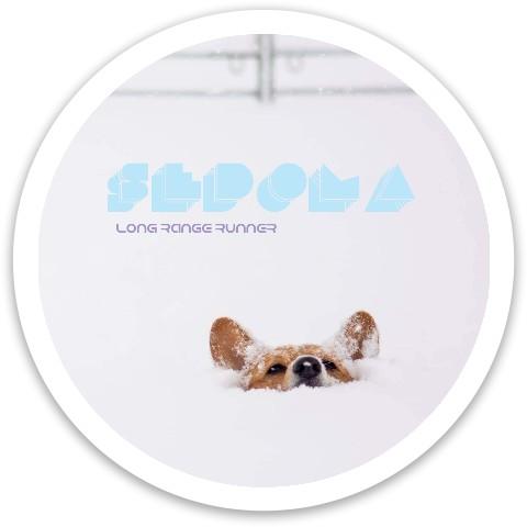 Sedona Dynamic Discs Fuzion Sheriff Driver Disc