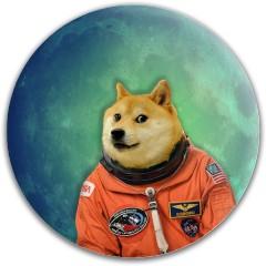 Doge In Space Dynamic Discs Fuzion Felon Driver Disc