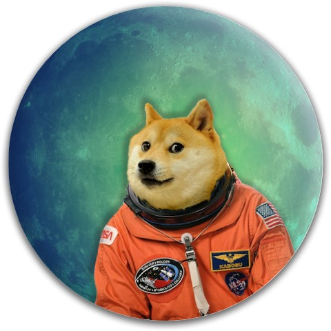 Doge In Space Dynamic Discs Fuzion Felon Driver Disc