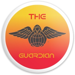 Guardian Angel Dynamic Discs Fuzion Trespass Driver Disc