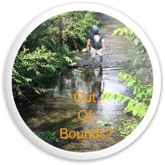 Out of Bounds! Dynamic Discs Fuzion Sheriff Driver Disc
