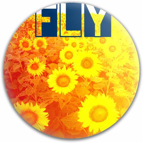 Sunflower Fly Dynamic Discs Fuzion Verdict Midrange Disc