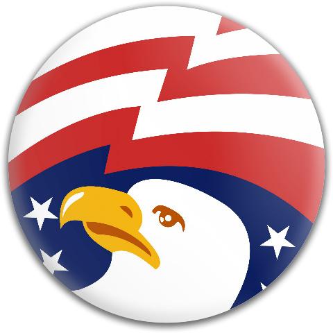 Bald Eagle Dynamic Discs Fuzion Judge Putter Disc