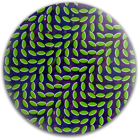 Animal Collective Dynamic Discs Fuzion Judge Putter Disc