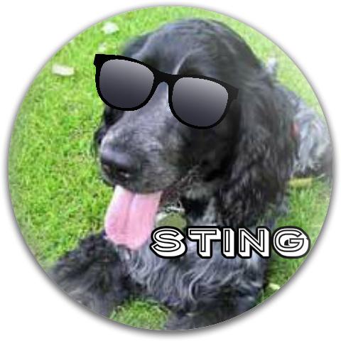 Sting Dynamic Discs Fuzion Convict Driver Disc