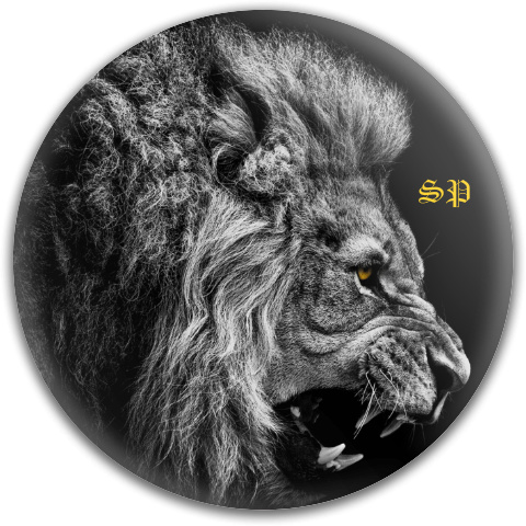 Lion with Initials Fly Discs Disc